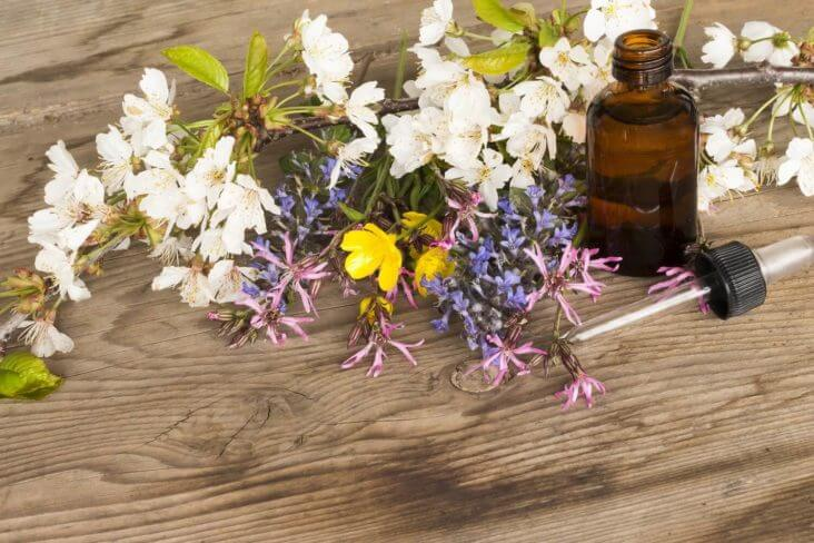 Bach Flowers - Bach Çiçek Terapisi